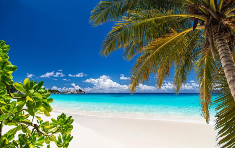タイ ビーチ